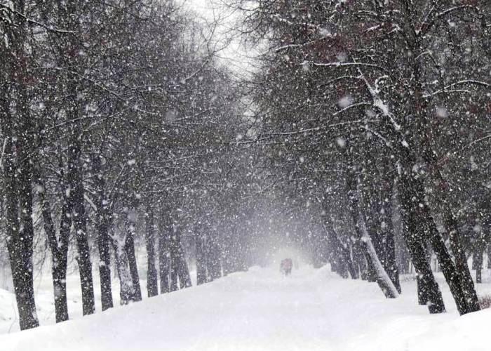 выпал снег рубцов