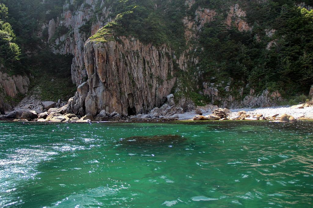 Высокий берег острова Петрова