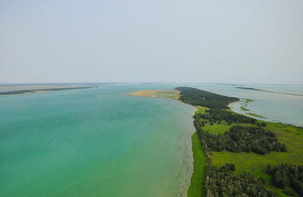 Озеро Чаны (Новосибирская область)
