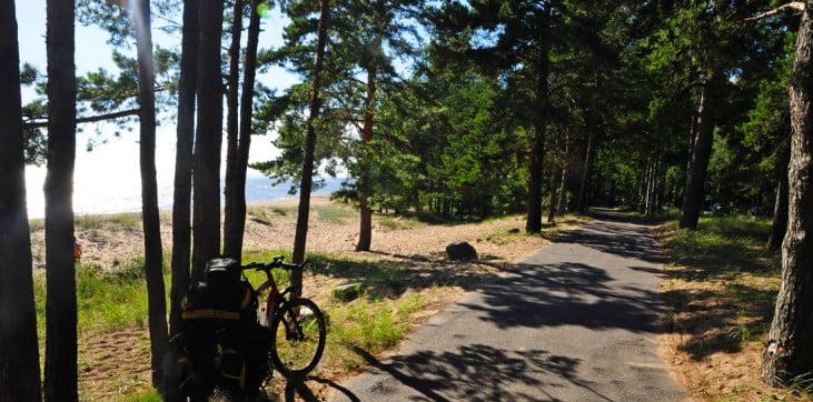 По дороге от музея Пенаты к Финскому заливу. 10 фактов о жизни Репина.