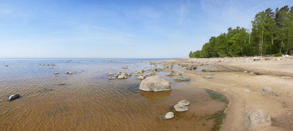 На берегу Финского залива в Пенатах. 10 фактов о жизни Репина.
