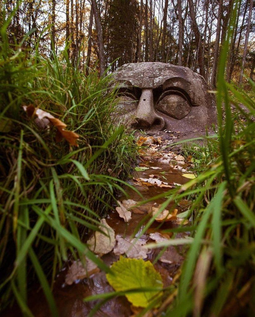 Голова из Сергиевки